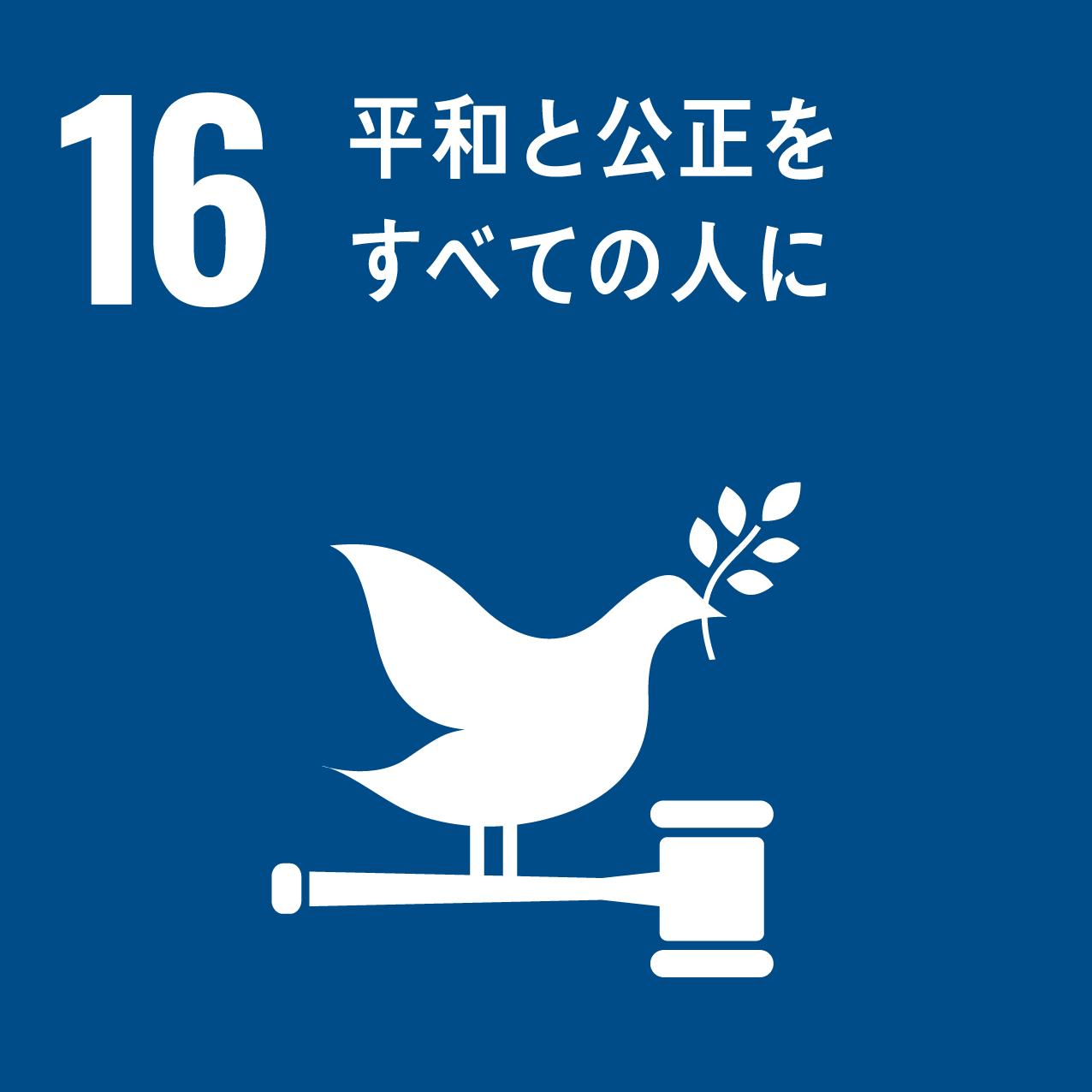 icon 16